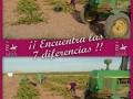 7-diferencias-vino-de-La-Mancha