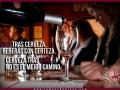 Vino-de-La-Mancha-y-cervez