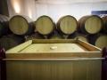 Sala de barricas Bodega vinos DO La Mancha 6