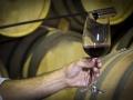 Sala de barricas Bodega vinos DO La Mancha 8