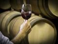 Sala de barricas Bodega vinos DO La Mancha 9