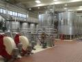 Sala de depositos vinos de La Mancha