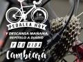 Dia-de-la-bicicleta