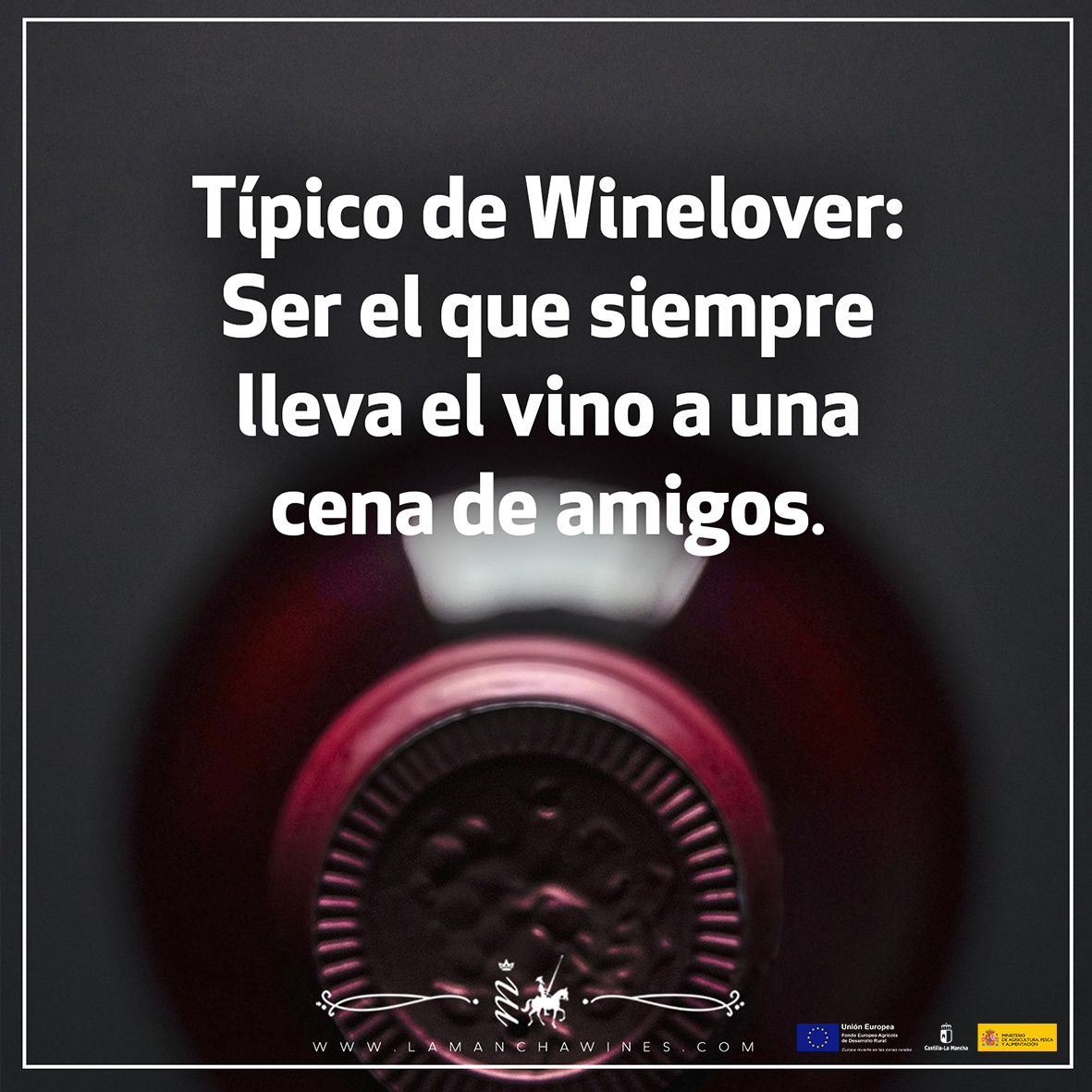 Tipico-de-Winelover-llevar-el-vino-a-la-cena-de-amigos
