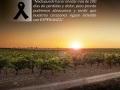 1-Homenaje-a-los-fallecidos-IG