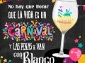 Carnaval-y-vino