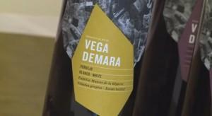 Vega Demara Verdejo