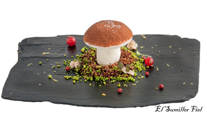 Falso Boletus de cremoso de queso manchego y migas de chocolate-001