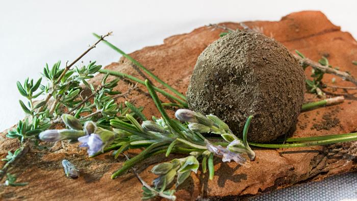 trufa-de-queso-y-setas-taberna-gastronómica-las-rejas-manuel-de-la-osa-700