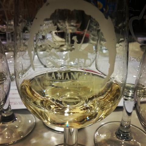 cata de blancos 1000noseequivocan. Concurso vinos de la Tierra del Quijote 2016