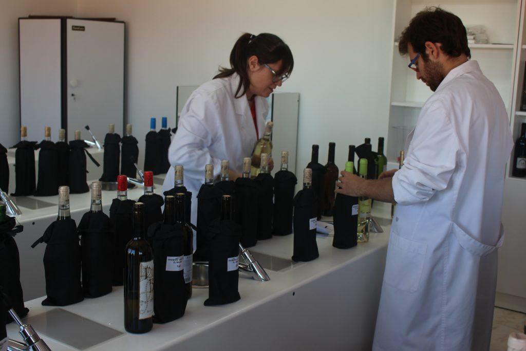 Preparando las muestras de Arien por el mundo en la sede del consejo regulador