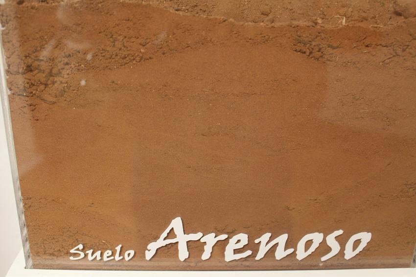 Las arenas son las que más rápido filtran el agua.