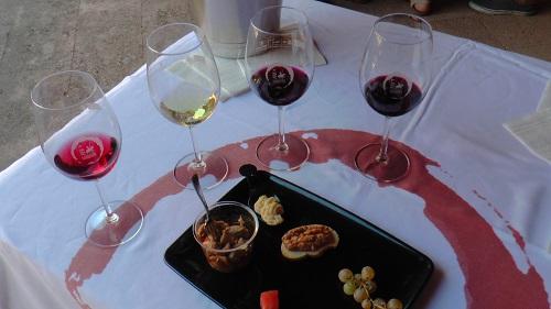 Cata maridada de vinos DO La Mancha