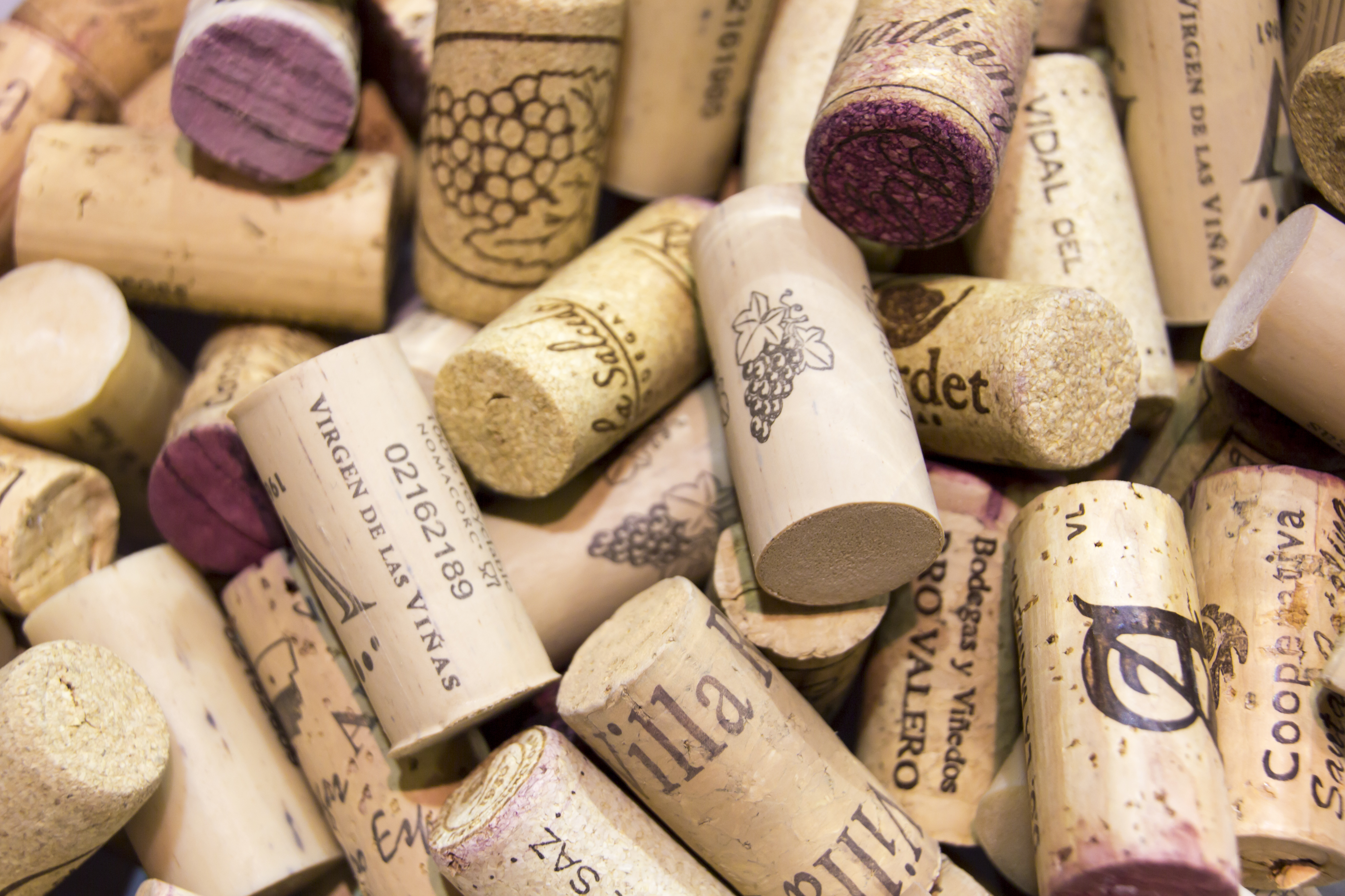 El consumo de vino entre los jovenes