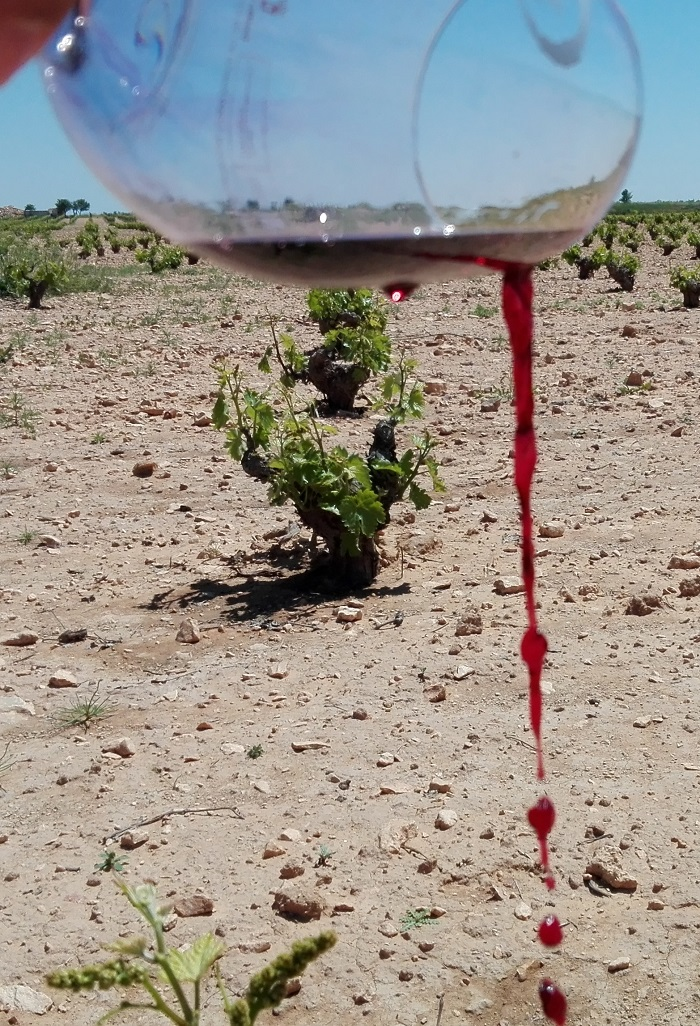 el-vino-tinto-ha-sido-asimilado-como-sangre-en-su-caracter-sagrado