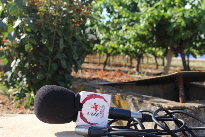 La actualidad de los vinos DO La Mancha en el campo