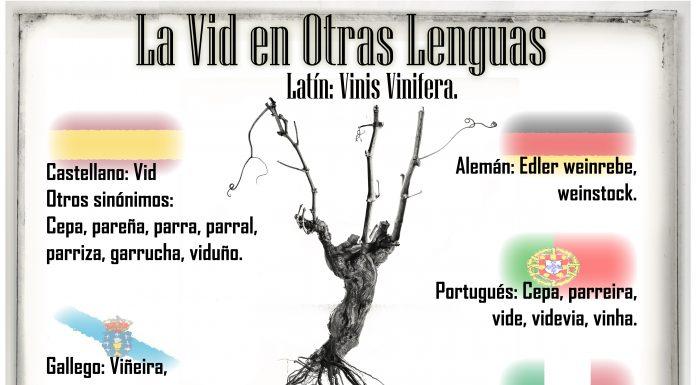 la-vid en otras lenguas