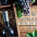 20161003-men-are-like-wine-some-turn-into-vinegar
