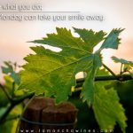 20161114-if-you-love-what-you-do