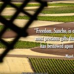 20161202-freedom-sancho-it-is-one-of