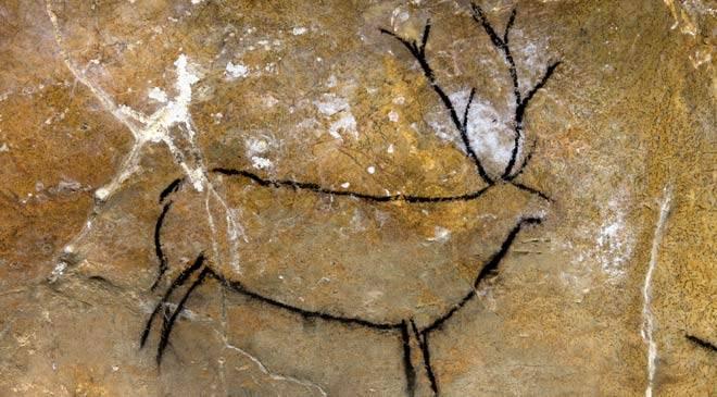 imagen-de-un-cervido-fuente-www-paleomanias-com