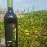 camino de Prowein 2017- vinos de La Mancha