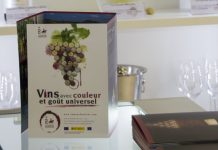 folleto-promocional-con-el-slogan-en-frances en Vinexpo