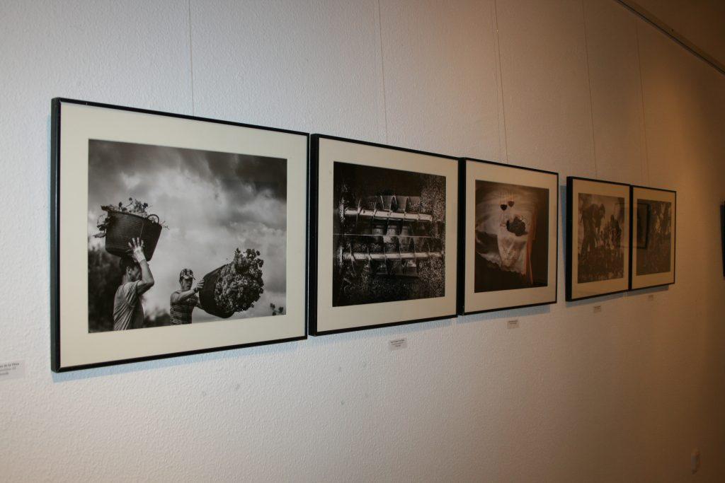 serie-expuesta-con-tres-de-las-cinco-imagenes-premiadas-a-luna-de-la-ossa