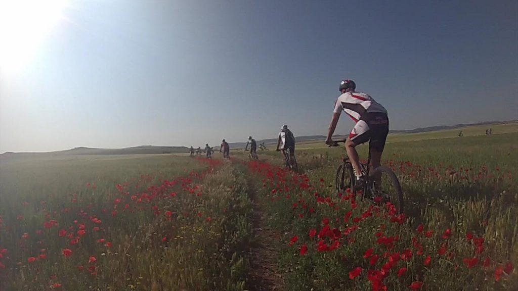 El placer de la bici en verano