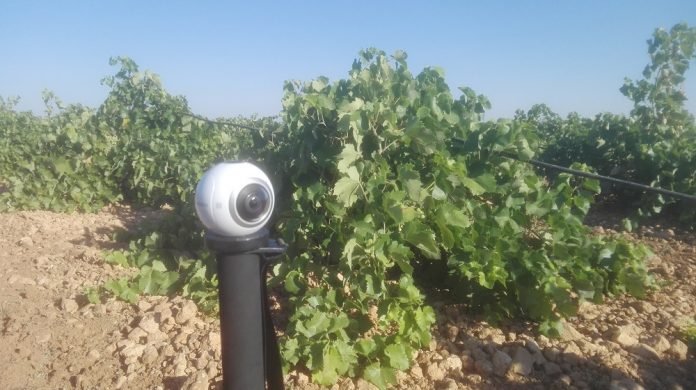 vendimia en 360 en La Mancha
