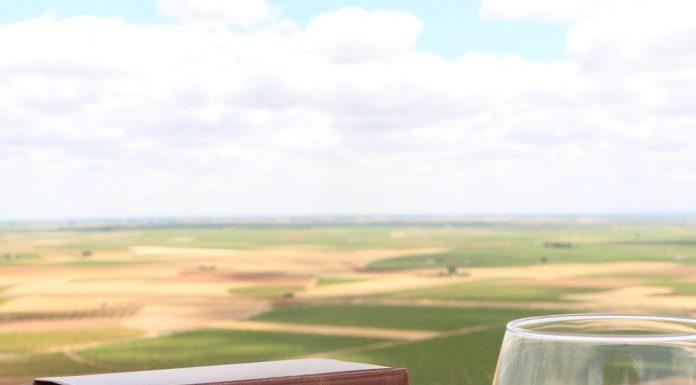 Vino DO La Mancha y Quijote