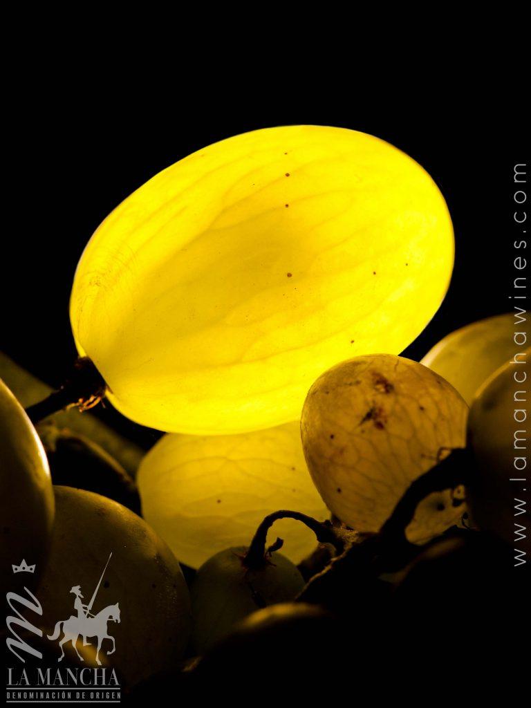 vida-y-luz-de-juan-miguel-garrudo
