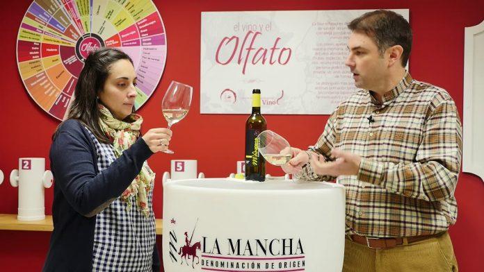 aprendiendo a cata vinos blanco airen do mancha