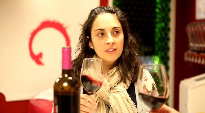 Crianza, aprende a catar un vino - DO Mancha