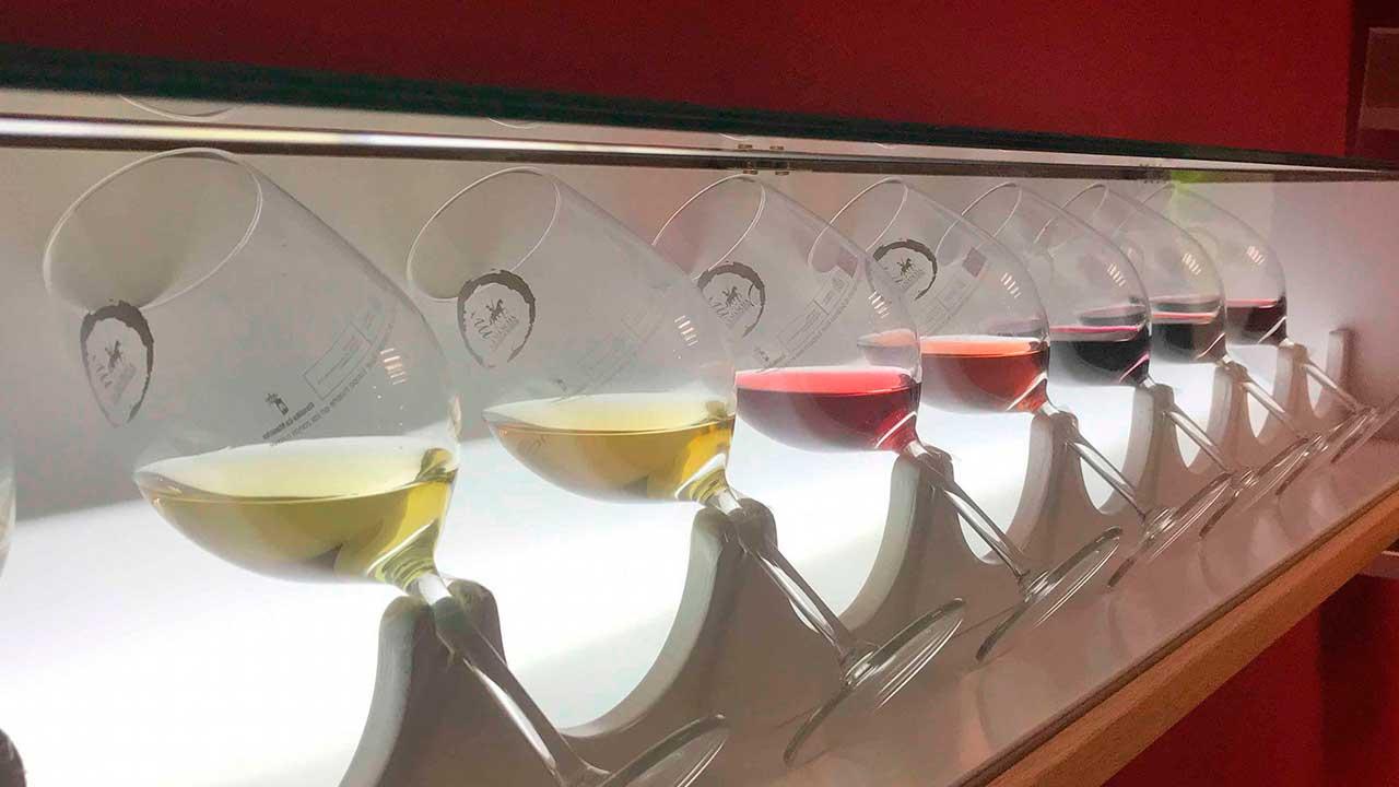 Centro de interpretación del vino - Vista