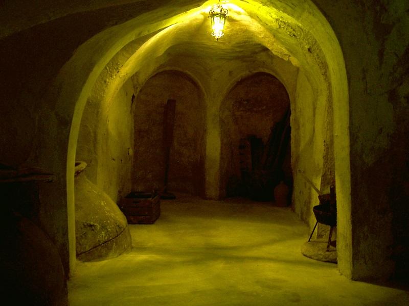 El Origen del vino - La Mancha desde siempre