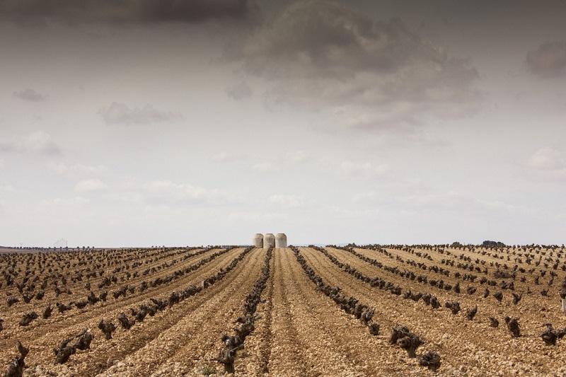 El Origen del vino - La Mancha extension