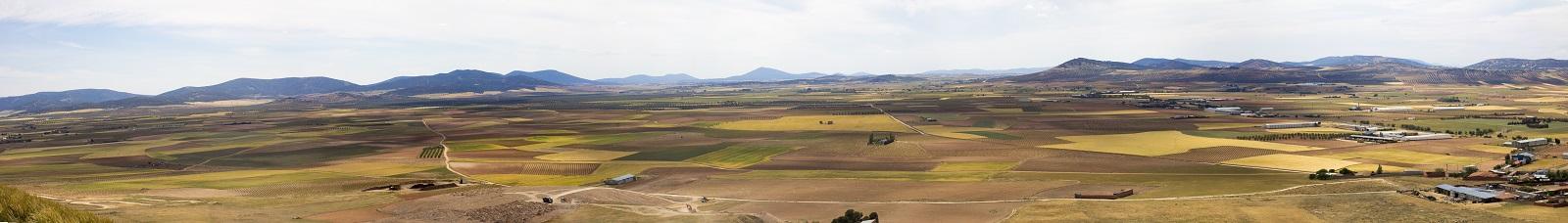 ICRDO La Mancha - vinos de calidad