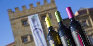 os vinos DO La Mancha frente al Revillagigedo