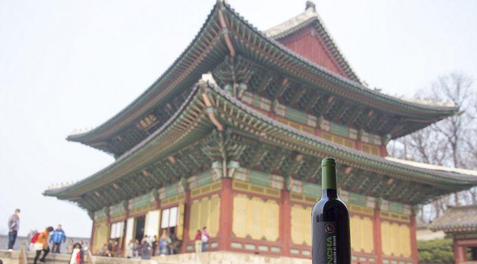 Segunda ocasión que los vinos DO La Mancha visitan Corea del Sur
