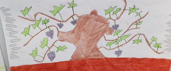 Vid dibujado por un escolar en FERAGA