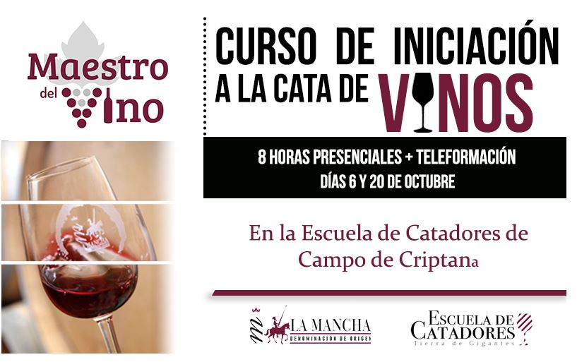cartel del curso catadores Maestro del vino