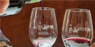 Cómo catar un vino Syrah