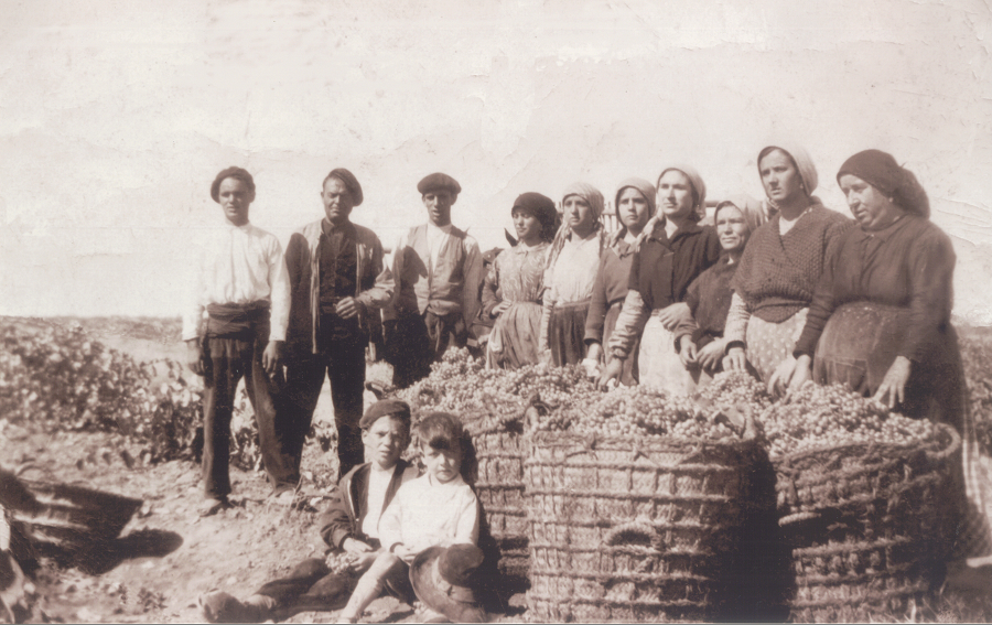 broncearse en La Mancha trabajando en el campo