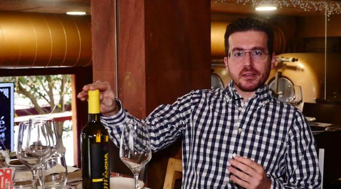 cómo catar un vino Macabeo