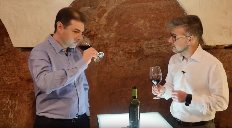 cómo catar un vino Syrah - Fase olfativa