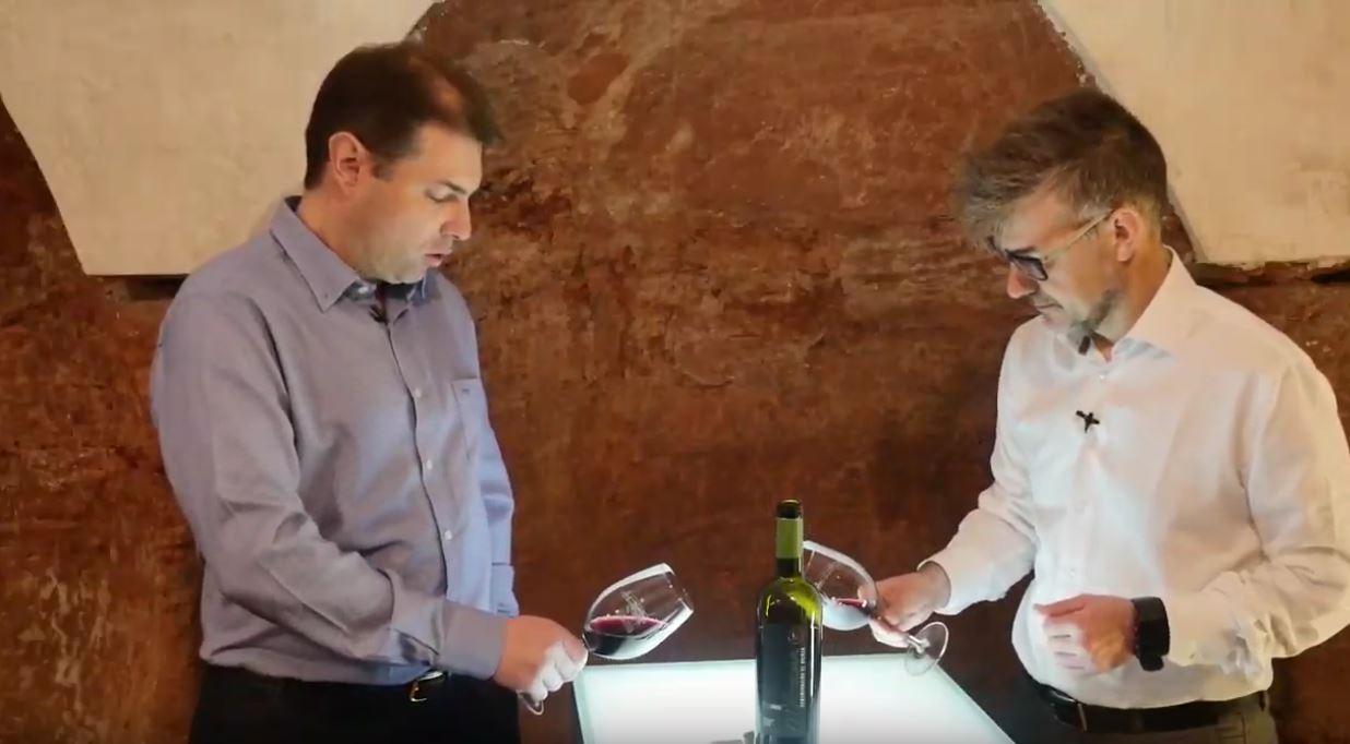 como catar un vino Syrah - Fase visual