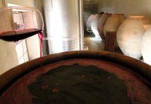 Historia de un vino tinto en la tinaja