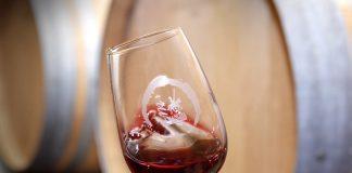 temperatura y conservacion del vino