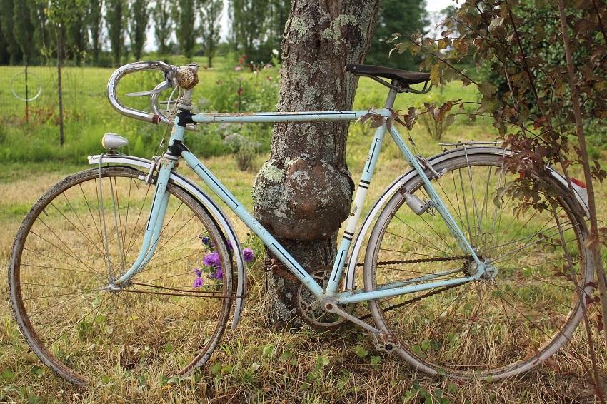 Bici antigua y vinos de La Mancha